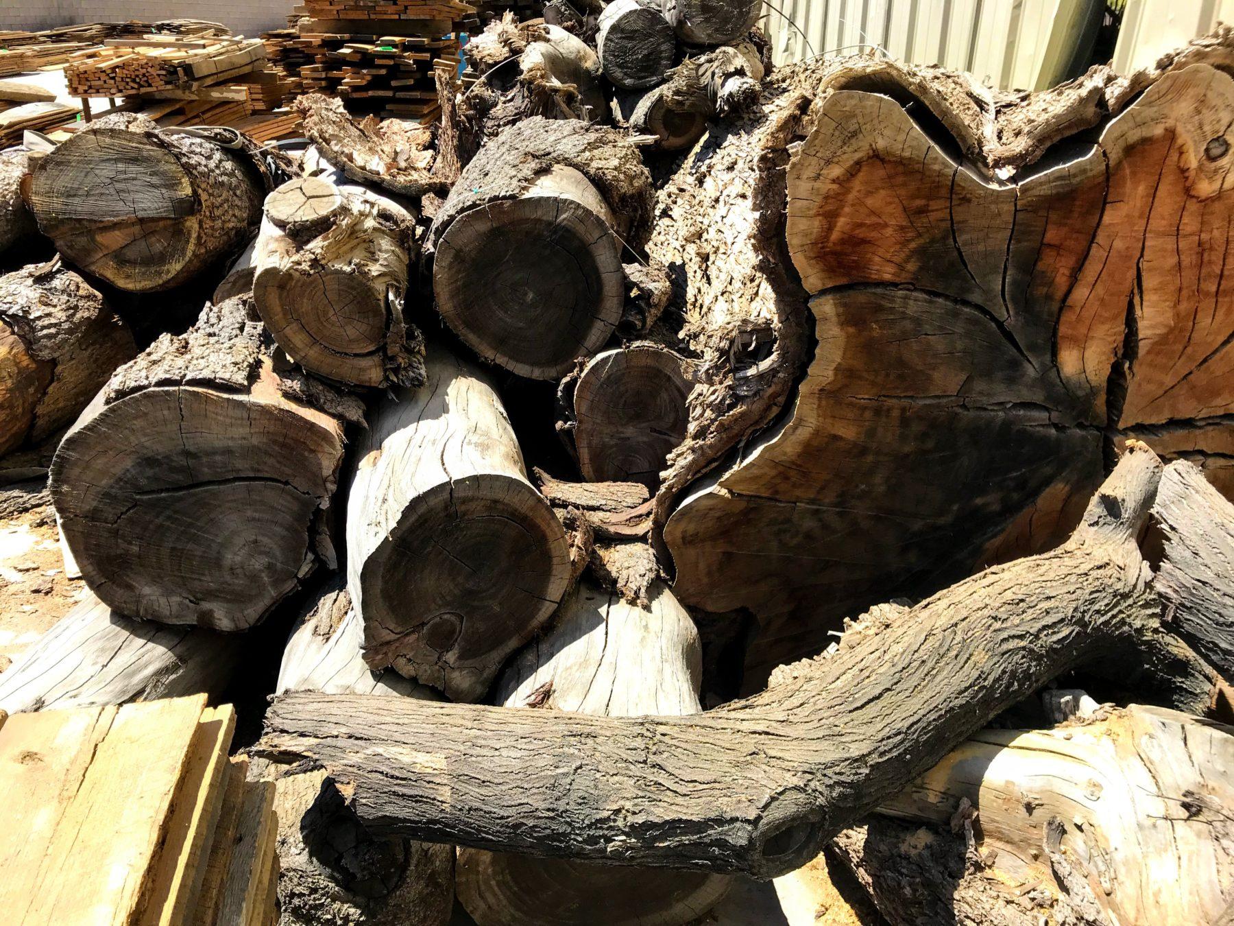 Live Edge Timbers 2