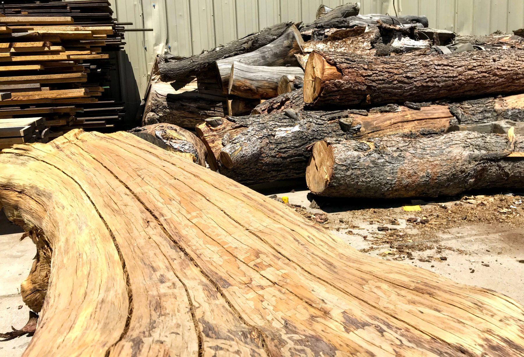 Live Edge Timbers 3